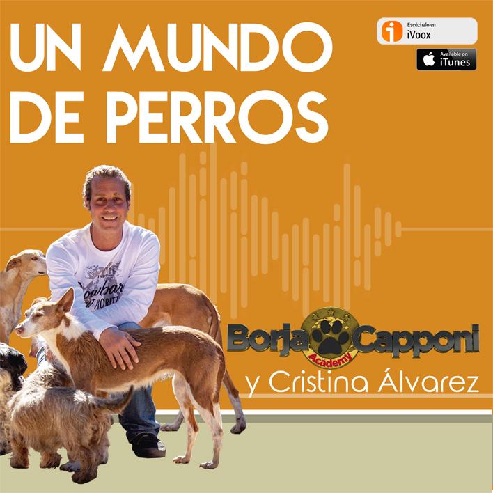 Podcast En Un Mundo de Perros